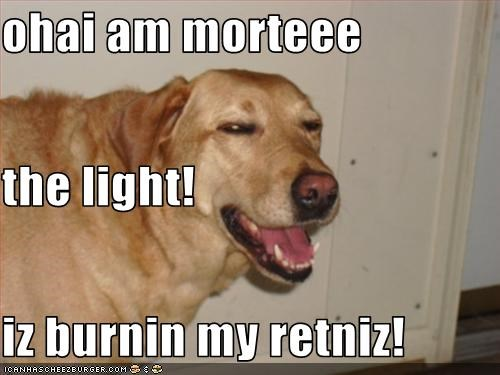 ohai am morteee the light! iz burnin my retniz!