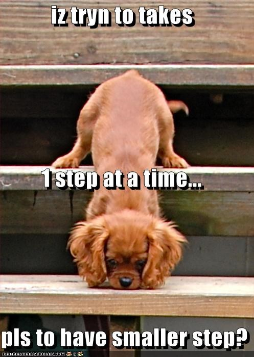 iz tryn to takes 1 step at a time... pls to have smaller step?