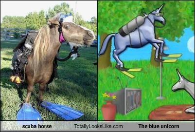 scuba horse Totally Looks Like The blue unicorn