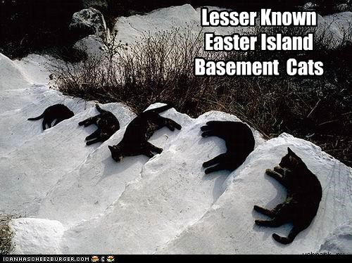 Lesser Known Easter Island Basement  Cats