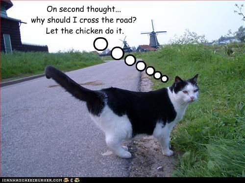 On second thought... why should I cross the road?  Let the chicken do it.
