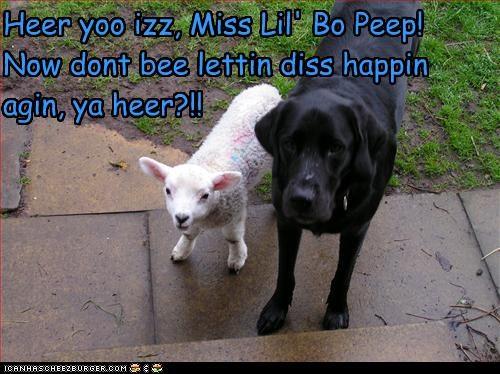 Heer yoo izz, Miss Lil' Bo Peep!  Now dont bee lettin diss happin agin, ya heer?!!