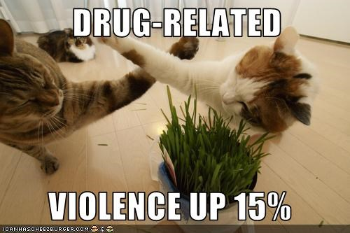 DRUG-RELATED   VIOLENCE UP 15%
