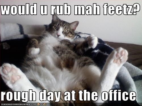 would u rub mah feetz?  rough day at the office