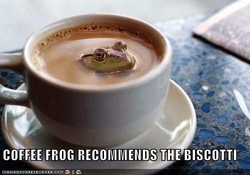 COFFEE FROG RECOMMENDS THE BISCOTTI