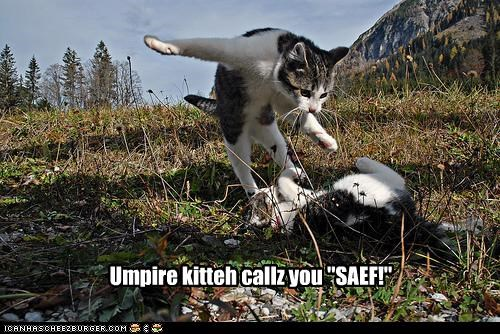 "Umpire kitteh callz you ""SAEF!"""