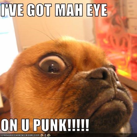 I'VE GOT MAH EYE  ON U PUNK!!!!!