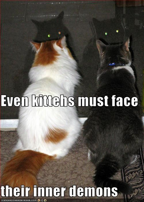 Even kittehs must face their inner demons