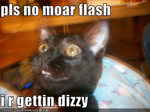 pls no moar flash  i r gettin dizzy