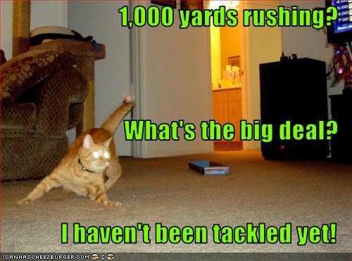 1,000 yards rushing? What's the big deal? I haven't been tackled yet!