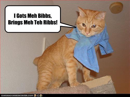 I Gots Meh Bibbs,  Brings Meh Teh Ribbs!