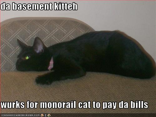 da basement kitteh  wurks for monorail cat to pay da bills