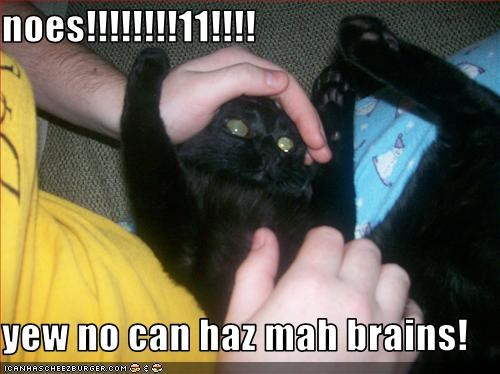 noes!!!!!!!!11!!!!  yew no can haz mah brains!