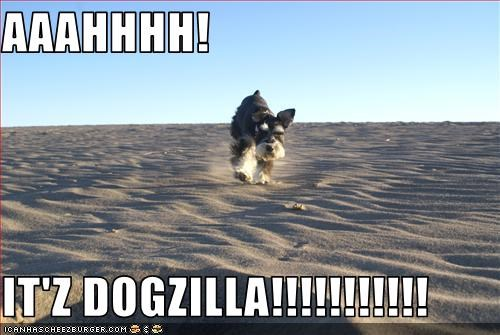 AAAHHHH!  IT'Z DOGZILLA!!!!!!!!!!!