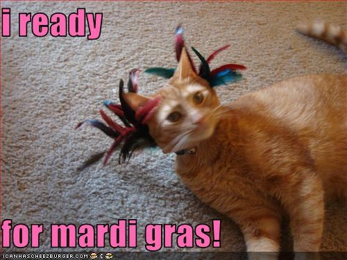 i ready  for mardi gras!