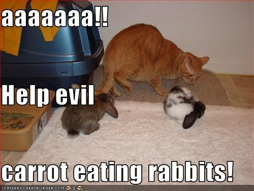 aaaaaaa!! Help evil carrot eating rabbits!