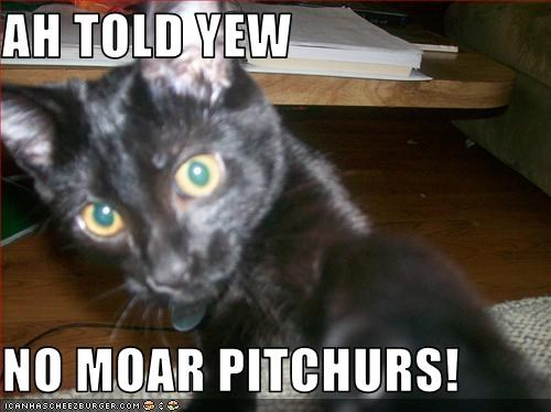 AH TOLD YEW  NO MOAR PITCHURS!