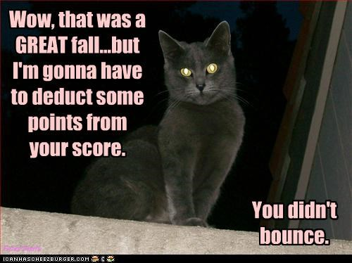 Wow, that was a GREAT fall...but I'm gonna have to deduct some points from your score.