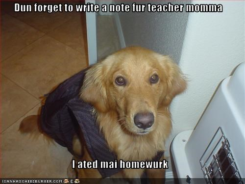 ate,golden retriever,homework,note,school,teacher,write