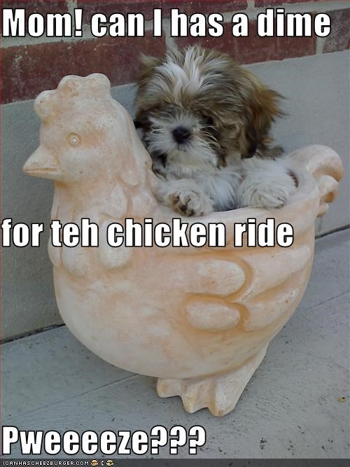 Mom! can I has a dime  for teh chicken ride Pweeeeze???