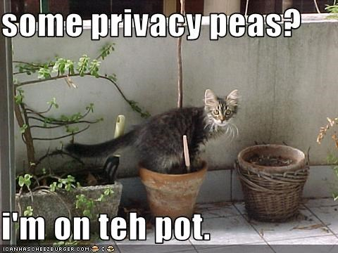 some privacy peas?  i'm on teh pot.