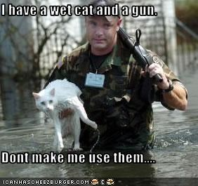I have a wet cat and a gun.  Dont make me use them....