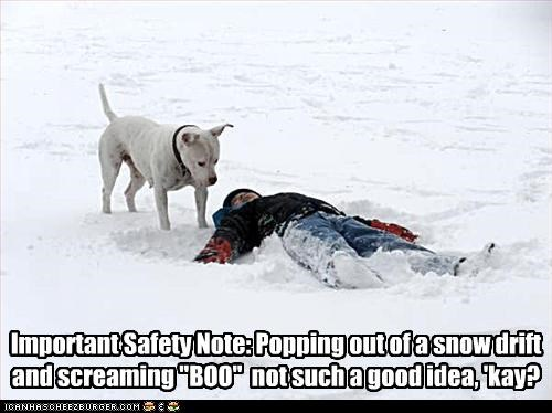 "Important Safety Note: Popping out of a snow drift and screaming ""BOO""  not such a good idea, 'kay?"
