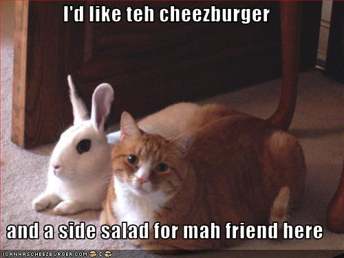 I'd like teh cheezburger  and a side salad for mah friend here