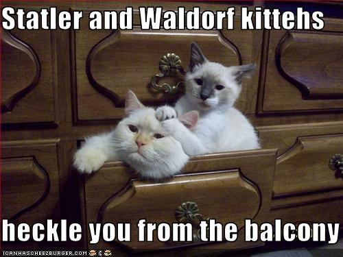 Statler and Waldorf kittehs  heckle you from the balcony