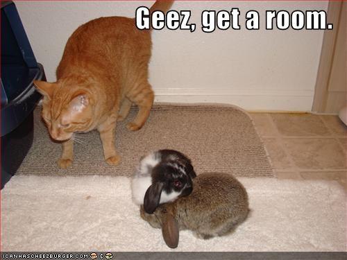 Geez, get a room.