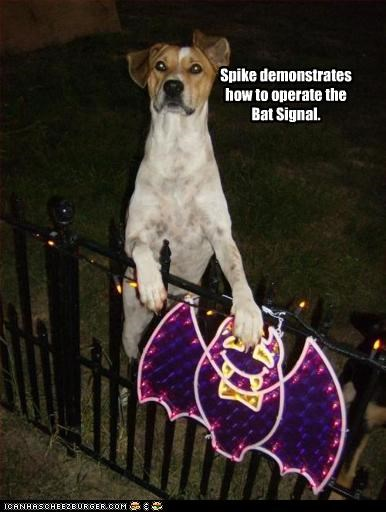 Spike demonstrates  how to operate the Bat Signal.