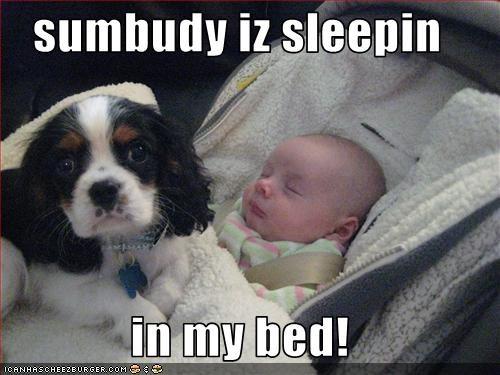 sumbudy iz sleepin  in my bed!