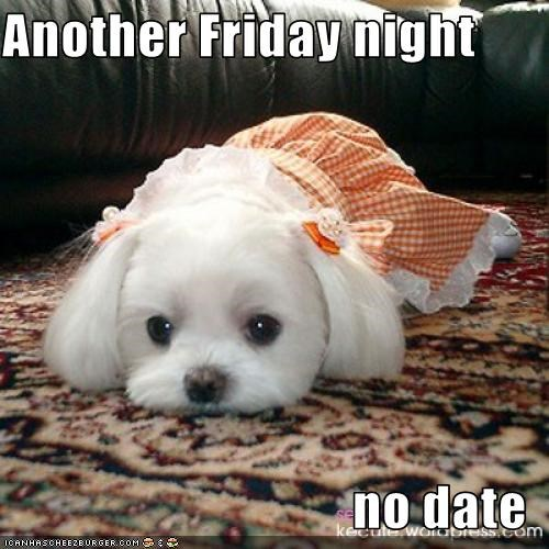 Another Friday night  no date