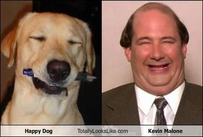 Happy Dog Totally Looks Like Kevin Malone