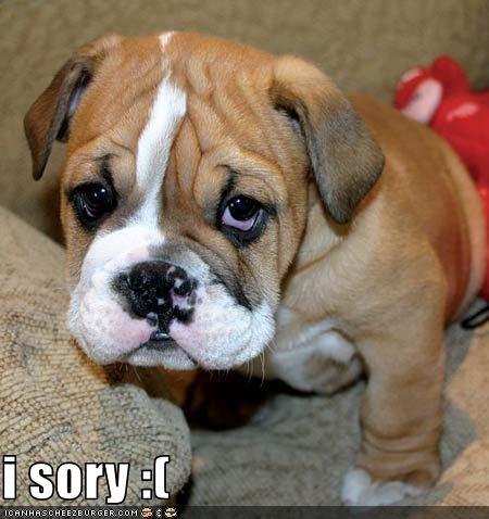 i sory :(
