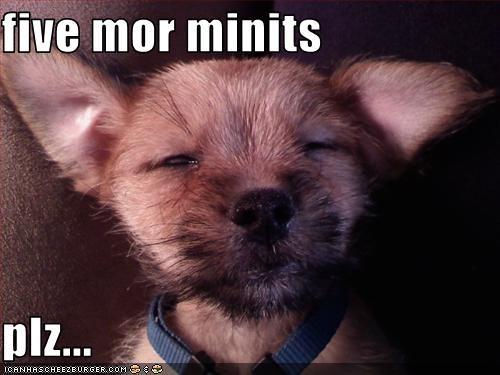 five mor minits  plz...