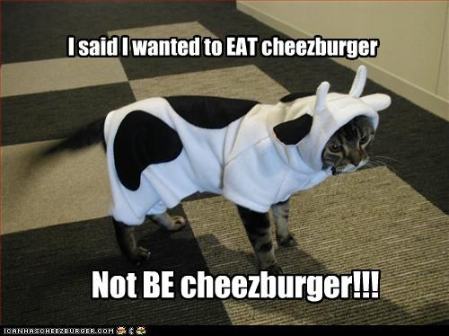 I said I wanted to EAT cheezburger