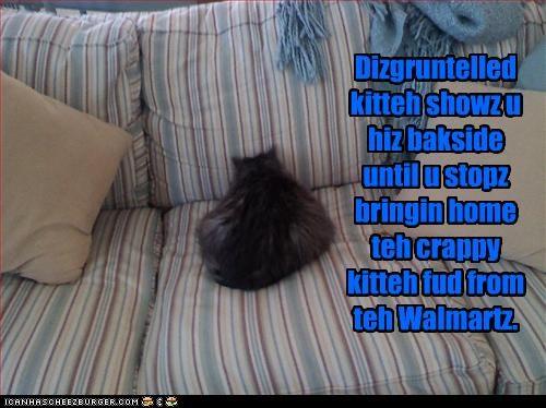 Dizgruntelled kitteh showz u hiz bakside until u stopz bringin home teh crappy kitteh fud from teh Walmartz.