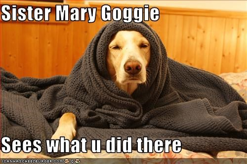 Sister Mary Goggie  Sees what u did there