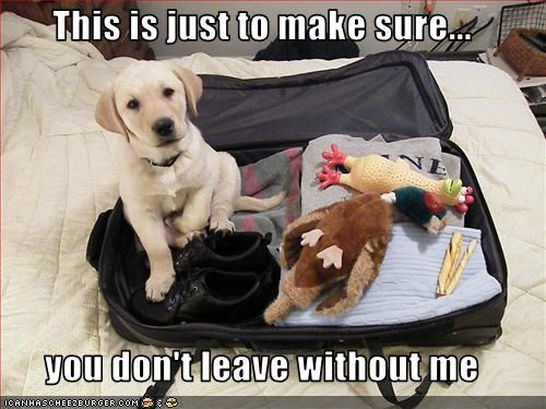 This is just to make sure...  you don't leave without me