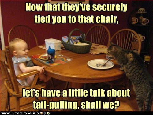 Now that they've securely  tied you to that chair,