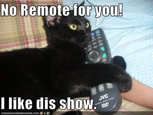 No Remote for you!  I like dis show.