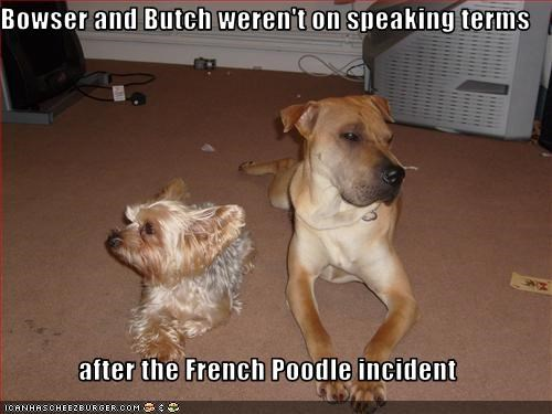 Bowser and Butch weren't on speaking terms  after the French Poodle incident