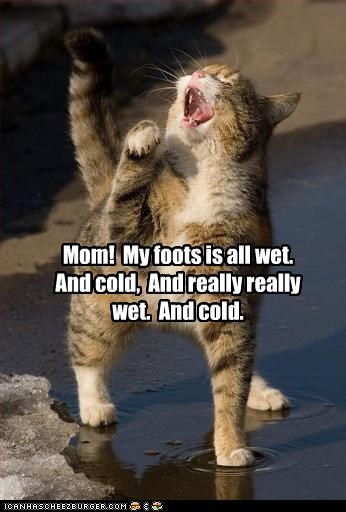 Mom!  My foots is all wet.  And cold,  And really really wet.  And cold.