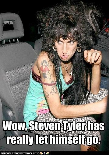 Wow, Steven Tyler has really let himself go.