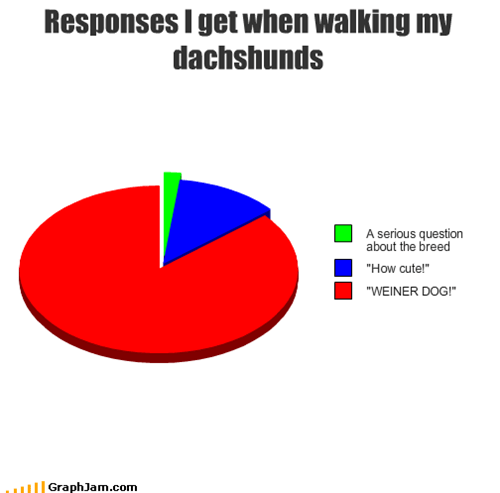 Responses I get when walking my dachshunds