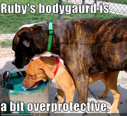 Ruby's bodygaurd is  a bit overprotective.