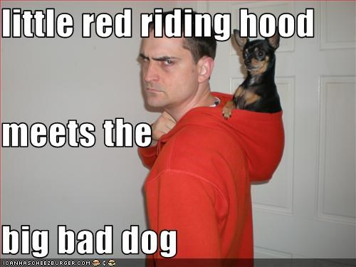 little red riding hood meets the big bad dog
