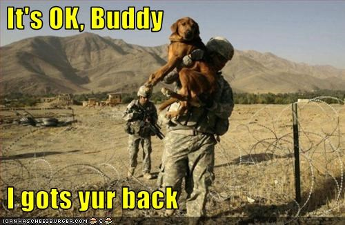 It's OK, Buddy   I gots yur back
