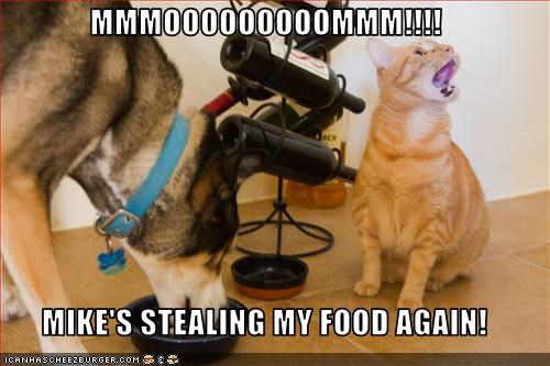 MMMOOOOOOOOOMMM!!!!  MIKE'S STEALING MY FOOD AGAIN!